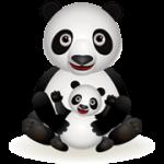 SEO szótár – Panda algoritmus