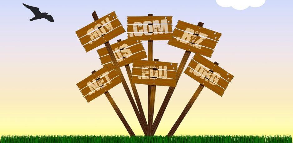 Domain vásárlás